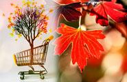 L'automne s'empare des rayons des cybermarchés
